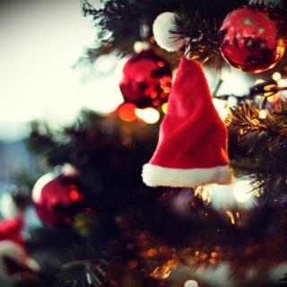 Ein Kochbuch unter dem Weihnachtsbaum – Geschenkideen!