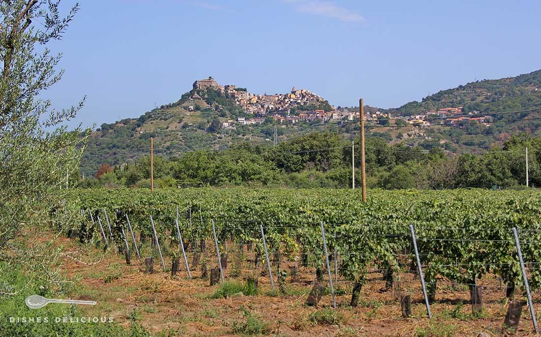 Das Bergdorf Castiglione di Sicilia aus der Ferne, im Vordergrund Weinreben.