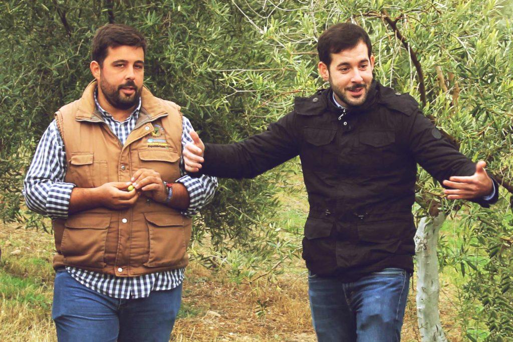Zwei Mitarbeiter von Vadolivo im Olivenhain