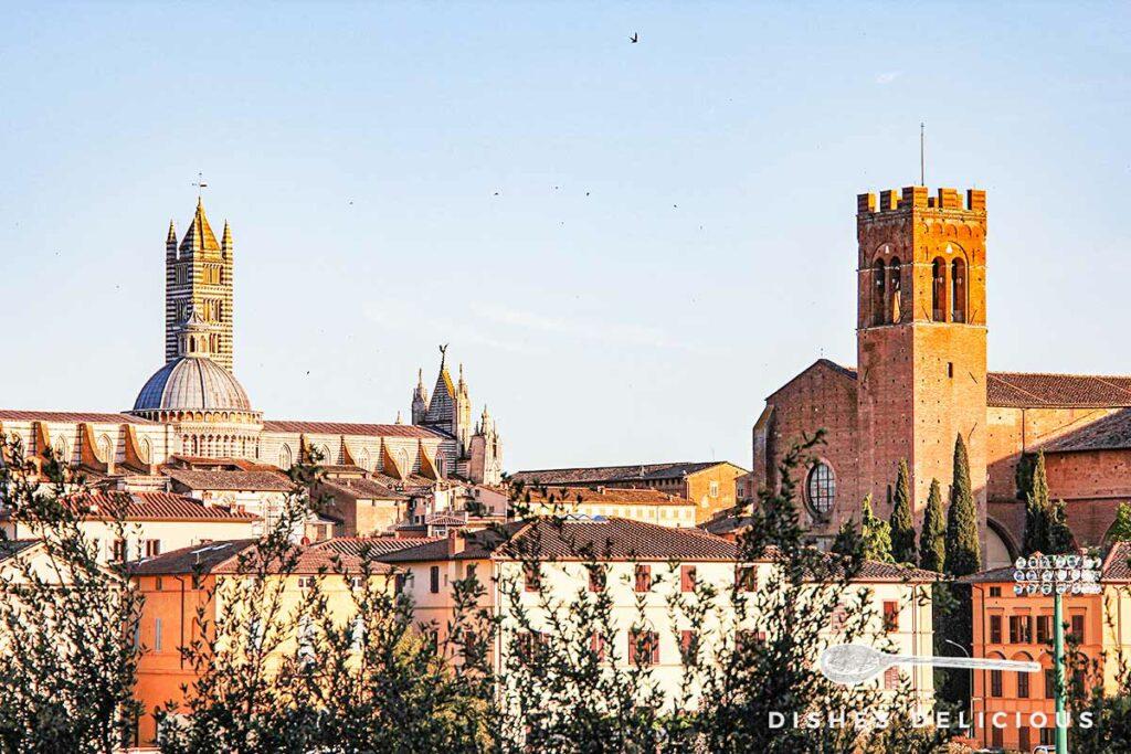 Sieneser Kirchen im Sonnenuntergang