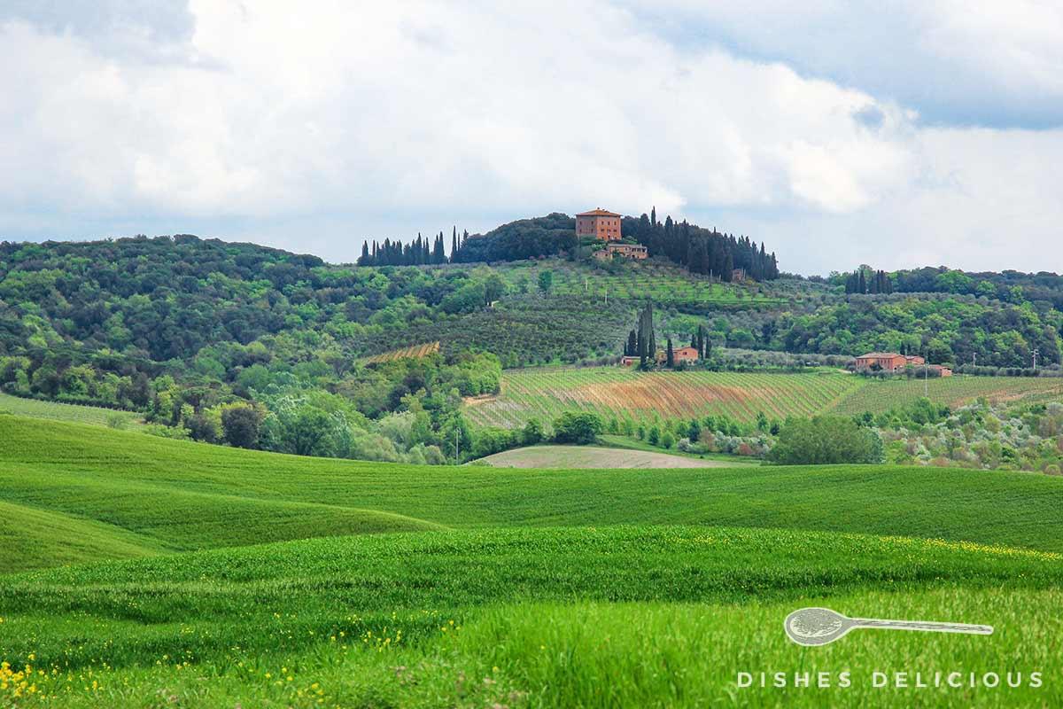 Landschaft in der Toskana mit Hügeln, Wiesen und einem Weingut.