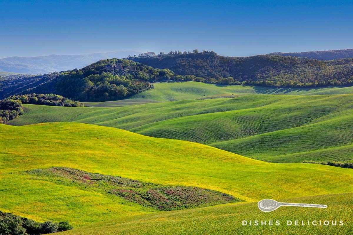 Foto einer welligen Wiesen- und Hügellandschaft südlich von Siena.