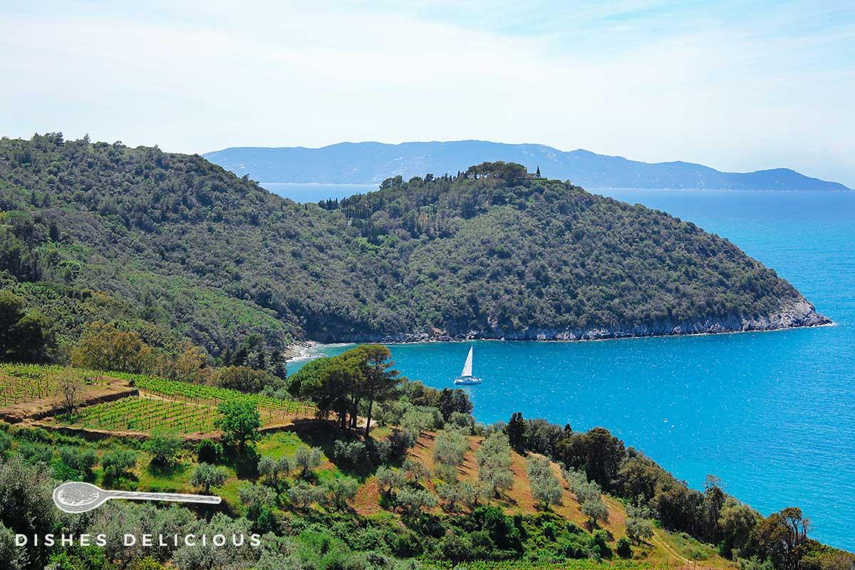 Foto einer kleinen Bucht am Monte Argentario, in der ein Segelboot ankert.