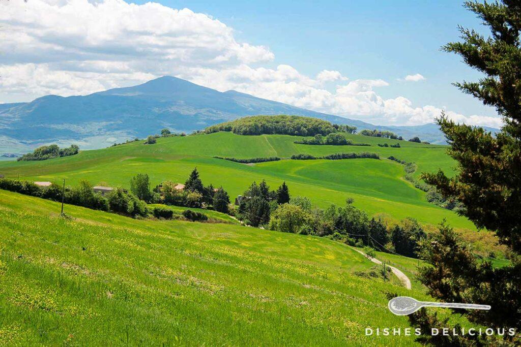 Foto einer Hügellandschaft mit Wiesen und Wanderwegen.