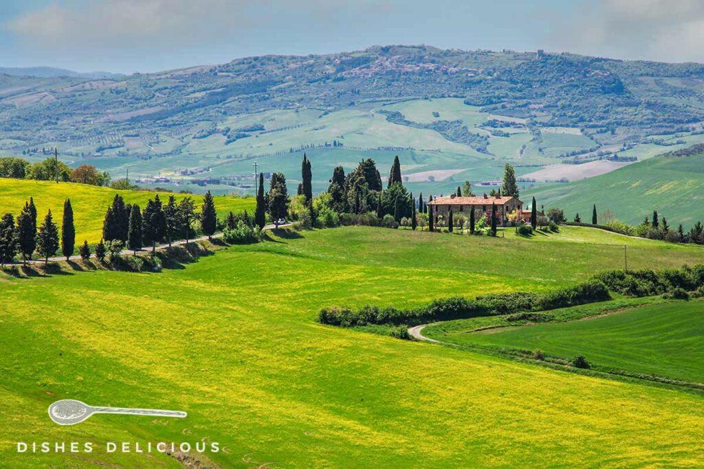 Foto einer Hügellandschaft mit Bauernhaus im Orcia-Tal.