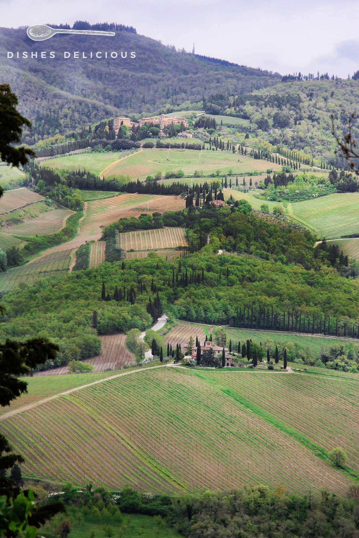 Landschaftspanorama rund um Radda in Chianti